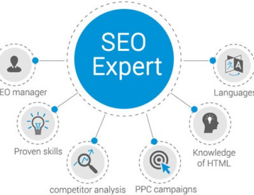 The Skills an SEO Specialist Should Have?